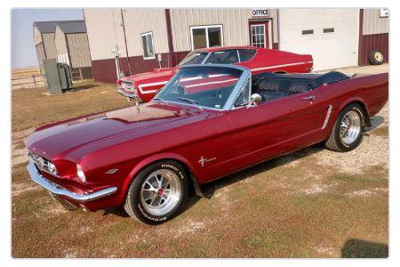 Mustang-red.jpg